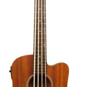 Goldtone GT Series Fretless Microbass